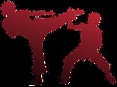 karate-971341__180