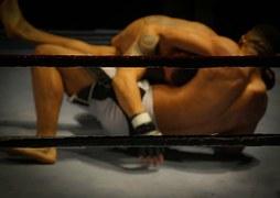 wrestling-384652__180