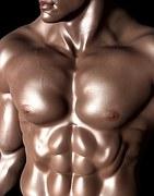 bodybuilder-331671__180