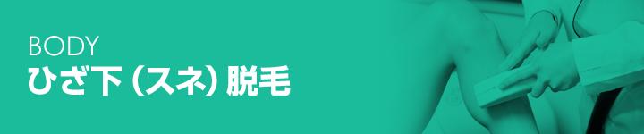 parts_shin_h2_01